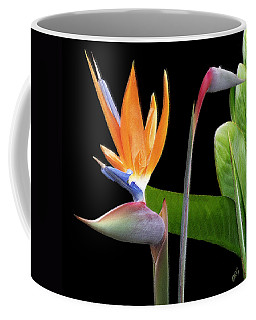 Royal Beauty II - Bird Of Paradise Coffee Mug by Ben and Raisa Gertsberg