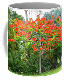 Royal Poinciana Coffee Mug by Kay Gilley