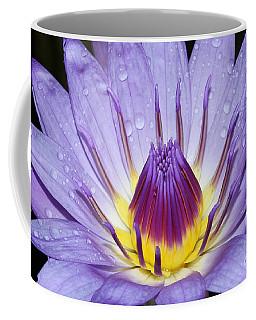 Royal Purple Water Lily #3 Coffee Mug