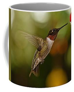 Ruby-throat Hummingbird Coffee Mug