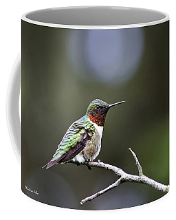 Ruby Throated Hummingbird Spotlight Coffee Mug