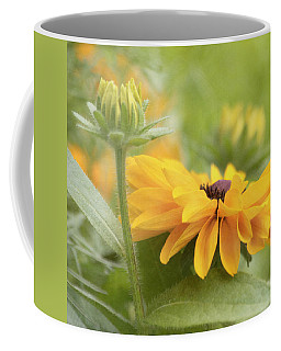 Coffee Mug featuring the photograph Rudbeckia Flower by Kim Hojnacki