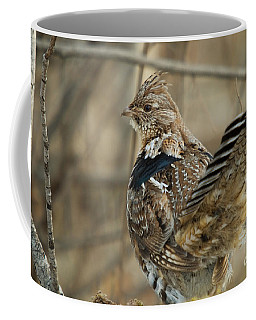 Ruffed Grouse In The Forest Coffee Mug