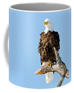 Ruffled Eagle Coffee Mug