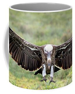 Ruppells Griffon Vulture Gyps Coffee Mug