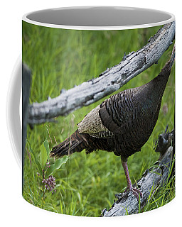 Rural Adventure Coffee Mug by Nina Stavlund