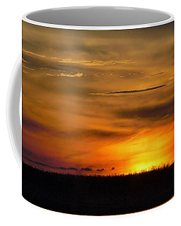 Coffee Mug featuring the photograph Sabine Wetlands Sunset by John Glass