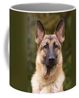 Sable German Shepherd Dog Coffee Mug
