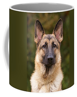 Sable German Shepherd Dog Coffee Mug by Sandy Keeton