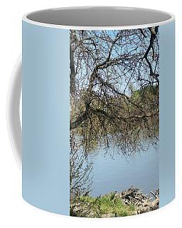 Fall At Sacramento River Scenic Photography Coffee Mug
