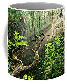 Coffee Mug featuring the photograph Sacred Grove by Dustin  LeFevre
