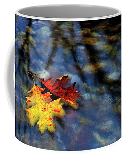 Safe Passage Coffee Mug