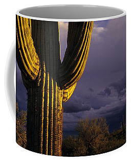 Saguaro Cactus Sunset At Dusk Arizona State Usa Coffee Mug