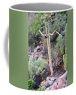 Coffee Mug featuring the photograph Saguaro Skeleton by Jemmy Archer