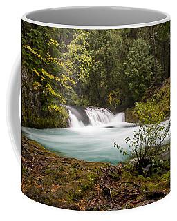 Sahalie Oasis Coffee Mug