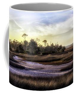 Saint Marks Wetland Sunset Coffee Mug by Lynn Palmer