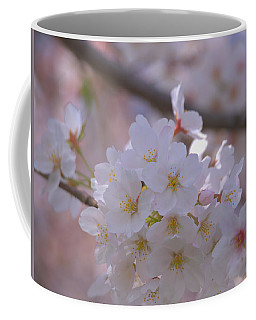 Coffee Mug featuring the photograph Sakura by Rachel Mirror