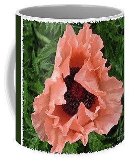 Coffee Mug featuring the photograph Salmon Colored Poppy by Barbara Griffin