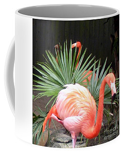 Salmon Flamingos Coffee Mug
