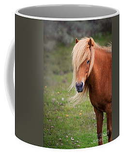 Salon Perfect Pony Coffee Mug