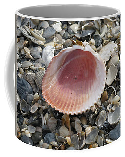 Salt Water Cockle Coffee Mug