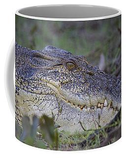 Saltwater Crocodile Coffee Mug by Venetia Featherstone-Witty