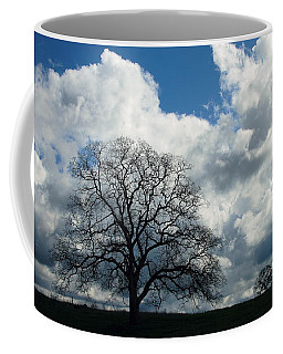 Same Tree Many Skies 13 Coffee Mug