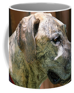 Sammy Coffee Mug by Aimee L Maher Photography and Art Visit ALMGallerydotcom