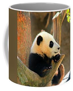 San Diego Zoo Panda Bear Xiao Liwu Coffee Mug