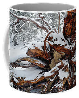 Coffee Mug featuring the photograph San Jacinto Fallen Tree by Kyle Hanson