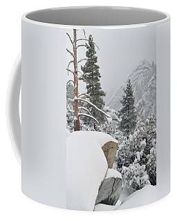 Coffee Mug featuring the photograph San Jacinto Winter Wilderness by Kyle Hanson