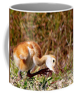 Coffee Mug featuring the photograph Sand-hill Chick Scratching  by Chris Mercer