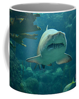 Coffee Mug featuring the photograph Sand Shark by Robert Meanor
