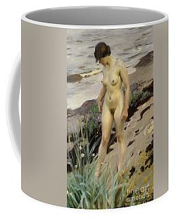 Sandhamn Study Coffee Mug