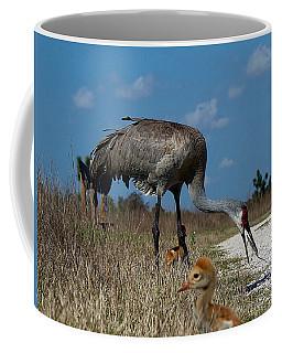 Coffee Mug featuring the photograph Sandhill Crane 038 by Chris Mercer