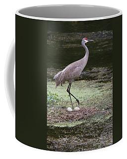 Sandhill Crane And Eggs Coffee Mug