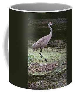 Sandhill Crane And Eggs Coffee Mug