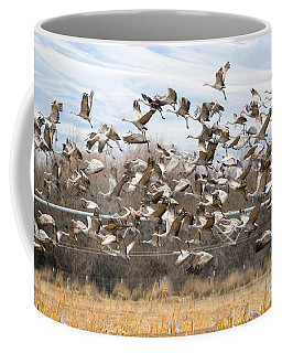 Sandhill Crane Explosion Coffee Mug