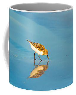 Sandpiper Mirror Coffee Mug