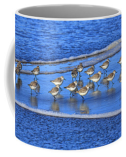 Sandpiper Symmetry Coffee Mug