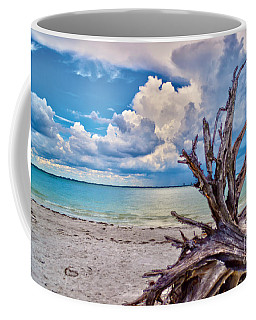 Sanibel Island Driftwood Coffee Mug