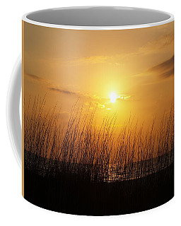 Coffee Mug featuring the photograph Sarasota Sunset's by Athala Carole Bruckner