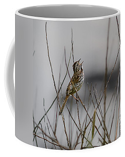 Savannah Sparrow Coffee Mug by Marty Saccone