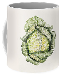 Savoy Cabbage  Coffee Mug