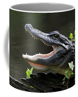 Say Aah - American Alligator Coffee Mug