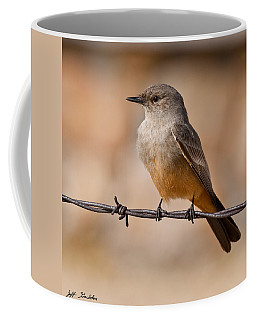 Say's Phoebe On A Barbed Wire Coffee Mug by Jeff Goulden