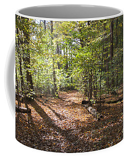 Scared Grove 2 Coffee Mug by William Norton