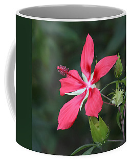 Coffee Mug featuring the photograph Scarlet Hibiscus #3 by Paul Rebmann