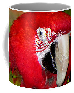 Coffee Mug featuring the photograph Scarlet Macaw by Bill Swartwout