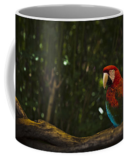 Scarlet Macaw Profile Coffee Mug by Bradley R Youngberg